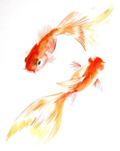 Goldfish original watercolor painting 10 X 8 in by ORIGINALONLY