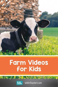 If you teach farms, animals, or food webs in the elementary classroom, you'll want to check out these resources from the Dairy Alliance. Cool Robots, Virtual Field Trips, Health Education, Teaching Kids, How To Introduce Yourself, Elementary Schools, Lesson Plans, Fun Facts, Dairy