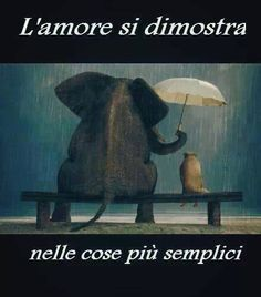 L'amore si manifesta spontaneamente...Love is demonstrated in the simplest things!