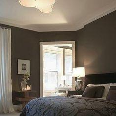 Dark Brown Bedroom Walls - Transitional - bedroom - Benjamin Moore Chocolate Sundae