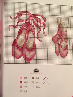 Bale ayakkabısı kanaviçe