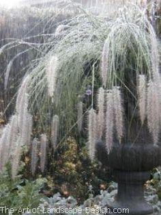 moon-garden-grassy-plume-urn