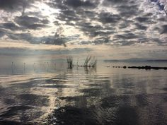 Phone photo by @gabrielegalimbertiphoto | Trasimeno lake, Umbria, Italy. Gone fishing with my dad this morning. We used to come here every weekend when I was a child. Trasimeno lake is the fourth for surface area in Italy. Trasimeno is shallow, muddy, and rich in fish, including pike, carp, and tench. The lake's water quality is very good, as a study by conservation group Italia Nostra showed in 2015. This is believed to be largely due to the small population and a lack of large farms in the…