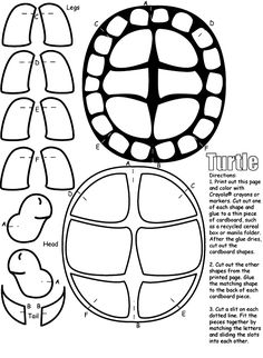 Notice turtle shell patterns, tangle the sections different shades of browns and greens?