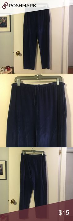 J. Crew blue velour track pants Elastic waist drawstring. Side pockets. J. Crew  Pants Track Pants & Joggers