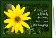 Image Result For Speedy Recovery From Hip Surgery Images Hip Surgery Surgery Hips