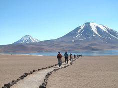 Paisagens surreais, animais e plantas resistentes e arqueologia atraem visitantes ao deserto do Atacama