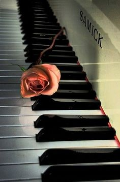 You loved to play piano.  Remember how you would make me practice hymns?