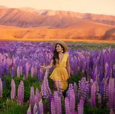 Feelin' like a yellow sunflower in a field of pink and purple 💐🌻 dress by and earrings by . Spring Photography, Photography Poses, Lavender Fields, Lavander, Fair Trade Fashion, Yellow Sunflower, Passion For Fashion, Purple, Pink