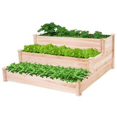 Vegetable Planters, Vegetable Bed, Planting Vegetables, Garden Planters, Container Garden, Wood Raised Garden Bed, Raised Beds, Different Plants, Garden Table