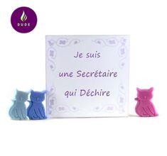 """Coffret Fondants Parfumés """"Je suis une Secrétaire qui Déchire"""" 15 Petits chats cire végétale pour brûle parfum"""