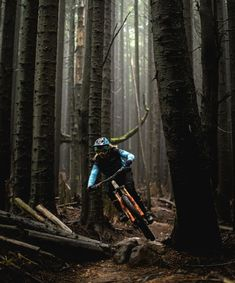Freeride Mountain Bike, Mountain Biking, Montain Bike, Bike Photography, Ride Or Die, Parkour, Autumnal, Bike Life, Bmx
