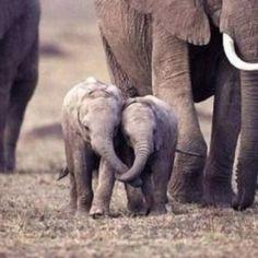 Cute Huggers.. by Nats Way