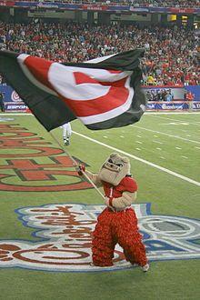 University of Georgia Mascot Hairy Dawg