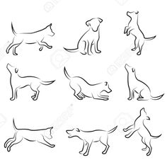 Dog Drawing Set Royalty Free Cliparts, Vectors, And Stock Illustration. Image 8230000.