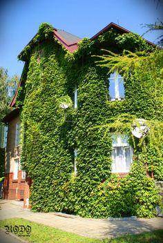 Śrem Places To Visit, Cabin, House Styles, Home Decor, Decoration Home, Room Decor, Cabins, Cottage, Home Interior Design