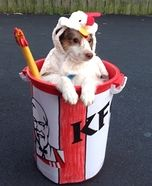 Creative costume ideas for dogs: KFC Chicken Bucket DIY Costume for Dogs