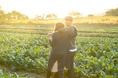 Couple of lovers in the cabbage fields