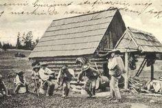 Carpathian Mountains, Mountain Landscape, Vintage Photographs, Old Photos, Poster, Black And White, Painting, Europe, Life