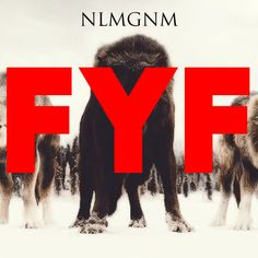 … The post NLMGNM – FYF appeared first on Music Arena Gh. Record Producer, Thought Provoking, Upcoming Artists, Rss Feed, News Songs, Lyrics, Relationship, Let It Be, Music