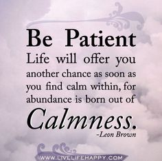Be patient. Life will offer you another chance as soon as you find calm within, for abundance is born out of calmness. -Leon Brown