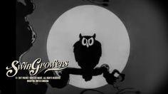 Swingrowers - Midnight - ( Halloween Video ) - ( Freshly Squeezed ) Halloween Playlist, Halloween Music, Halloween Gif, Halloween Cartoons, Halloween Wallpaper, Vintage Halloween, Music Clips, Music Film, Dance Music