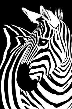 Zebra Works Digital Art by Janet Fikar - Zebra Works Fine Art Prints and Posters for Sale Zebra Painting, Zebra Art, Zebra Kunst, Art For Art Sake, Sale Poster, Pyrography, Art Google, Illustration, Frames
