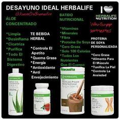 Batidos de proteinas para adelgazar herbalife scam