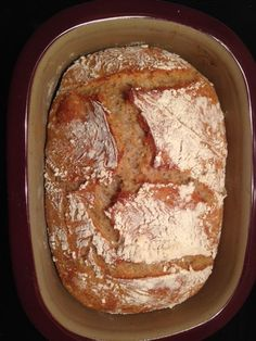 Dinkel apfel Brot