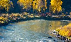 Fall Fly Fishing - Eagle River, Colorado