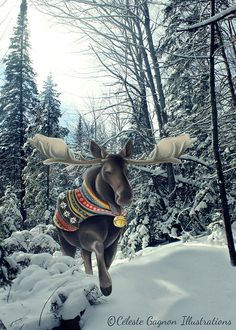 Moose Pictures, Scenery Pictures, Winter Pictures, Animal Pictures, Moose Decor, Moose Art, Christmas Moose, Deer Family, Yule