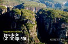amazonas colombia - Buscar con Google