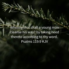Wherewithal shall a young man cleanse his way? by taking heed thereto according to thy word. Psalms 119:9 KJV http://bible.com/1/psa.119.9.KJV