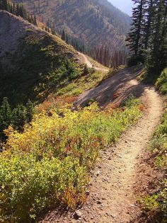 The remarkable Pacific Crest Trail meanders for 2,663 miles from the Mexican border to the Canadian, following the first ranges inland from the Pacific - the Sierra Nevada and the Cascades - through California, Oregon and Washington states © Andrew Leonard flickr user