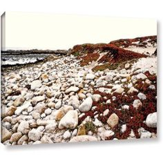 ArtWall Linda Parker A Pebble Beach  Gallery-Wrapped Canvas, Size: 18 x 24, White