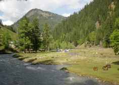 Surrounding areas of Taobat town in Neelum Valley showing a camping site. Azad Kashmir, Pakistan