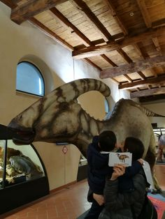 schede dinosauri, dinosaur cards, caffi mostra dinosauri bergamo, schede montessori, blog di el,#dinosauriabergamo Montessori, Dinosaur Cards, Cowboy Hats, Blog, Blogging
