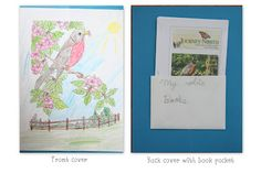 Robin Lapbook and Unit Study