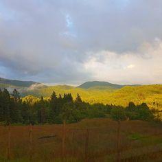 Litt sol på ettermiddagen  // A little sunshine in the afternoon  #landscape #utno #utnorge #forest #view #delvisskyet #yrbilder #tv2været # #norwegiannature #norwegianlandscape #visitnorway