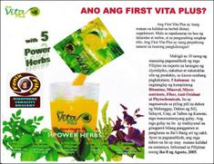 First Vita Plus | The FENIX FILES Natural Flavors, Natural Wonders, Natural Health, Healing, Herbs, Drinks, Marketing Plan, Business Marketing, Nature