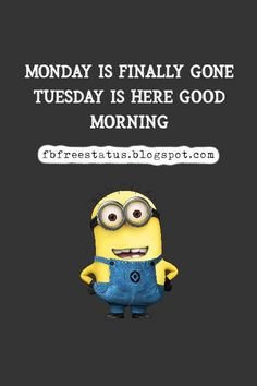 funny tuesday memes and funny tuesday morning quotes Happy Tuesday Meme, Happy Tuesday Morning, Good Morning, Tuesday Motivation Quotes, Morning Quotes, Daily Quotes, Motivational Quotes, Funny Memes, Sayings