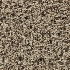 Carpet in living room and office area. STAINMASTER Active Family Carefree Coventry Frieze Indoor Carpet