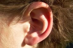 Scientists use stem cells to grow working inner ear parts to treat deafness