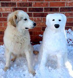 #snow #sculpture