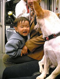 A double dose of cute on Muni Cute Kids, Pets, Pictures, Animals, Photos, Animales, Animaux, Animal, Animais