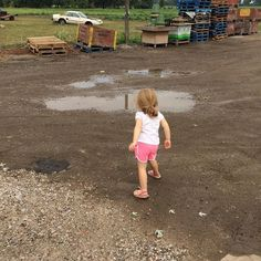 Sometimes you just have to throw rocks in the puddle. #farmlife #foodie