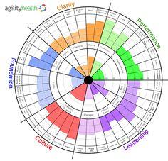 Agile Team Health Assessment Tool | Agilily Health Radar