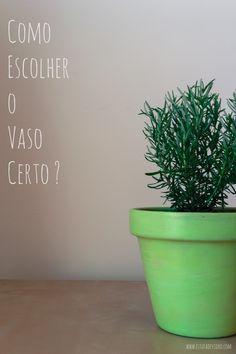 Escolher o vaso certo para as plantas é um dos passos mais importantes e por onde devemos começar. Vejam as dicas para escolher bem!