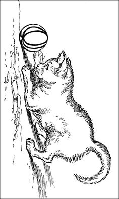 Kitten Coloring Pages - Image 1