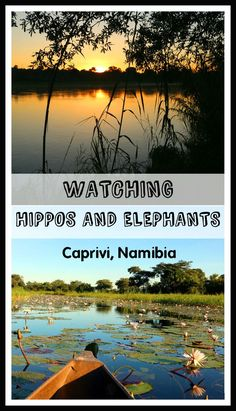 Windhoek to Caprivi travel itinerary, plus visit to Chobe National park and Victoria Falls. Route map, campsites, budget, highlights and practical tips. African Holidays, Chobe National Park, Travel Guides, Travel Advice, Travel Tips, Victoria Falls, Ultimate Travel, Africa Travel, Beach Fun